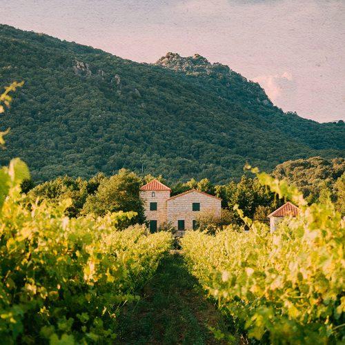 Carnet de week-end : visite du Périgord